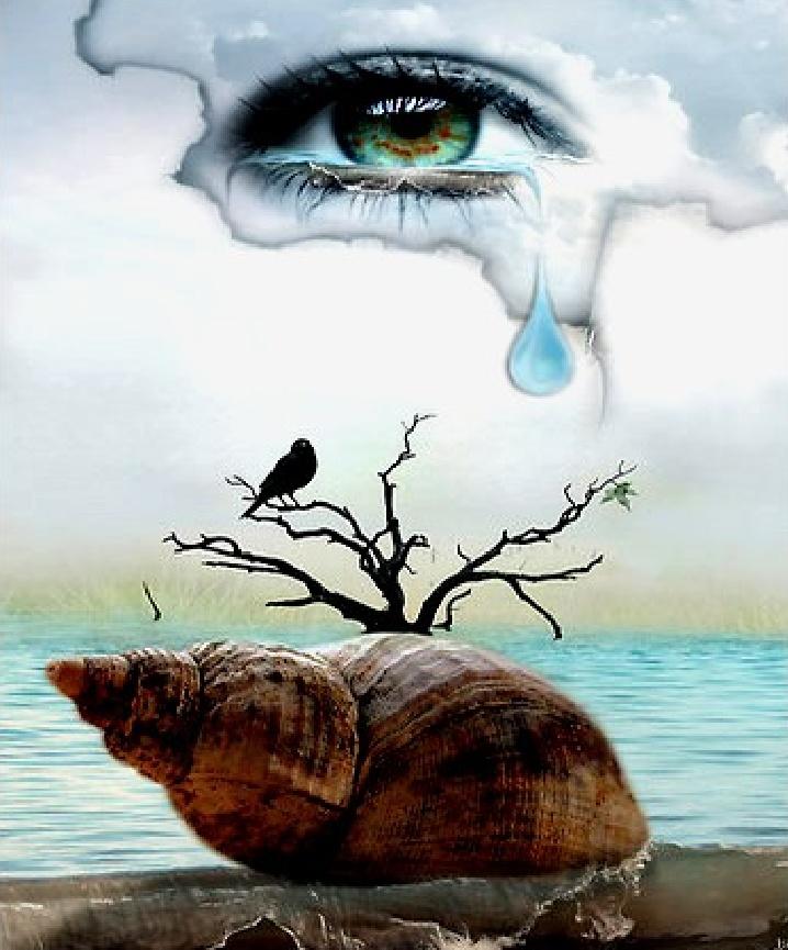 разработку картинки о чем плачет природа она поступила