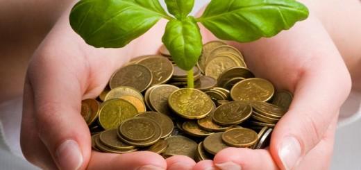 Растения, которые влияют на материальное благосостояние