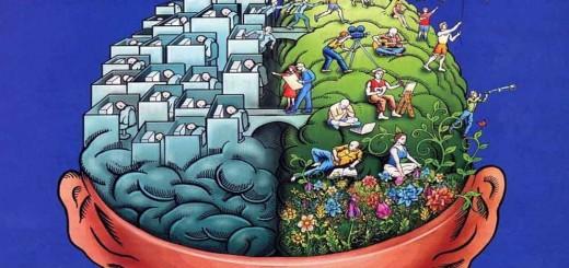 Интернет и мозговая деятельность0