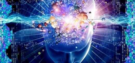 Интернет и мозговая деятельность6