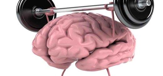 Способы держать мозг в тонусе1