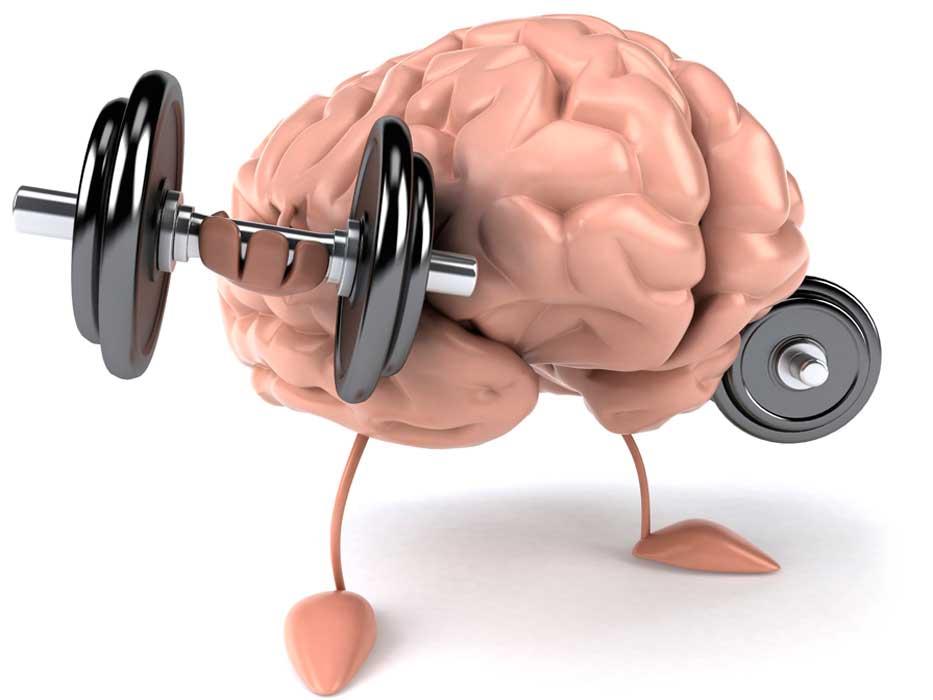 Способы-держать-мозг-в-тонусе5